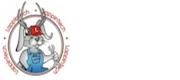 LappinTech Logo